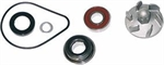 KIT POMPA ACQUA HONDA PANTHEON 2T 125-150